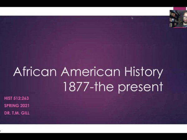 african american history the 20